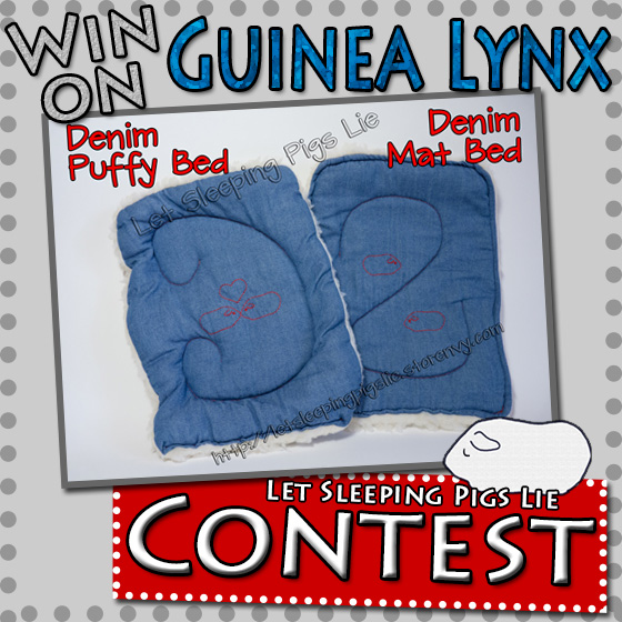 A button to Click to Enter Guinea Lynx Contest to Win a Set of Denim Beds