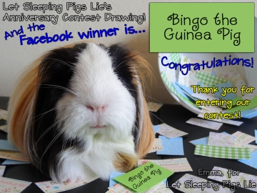 Celebrity Judge Emma announces the Facebook contest winner.