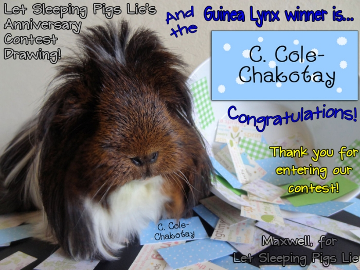 Celebrity Judge Maxwell announces the Guinea Lynx contest winner.