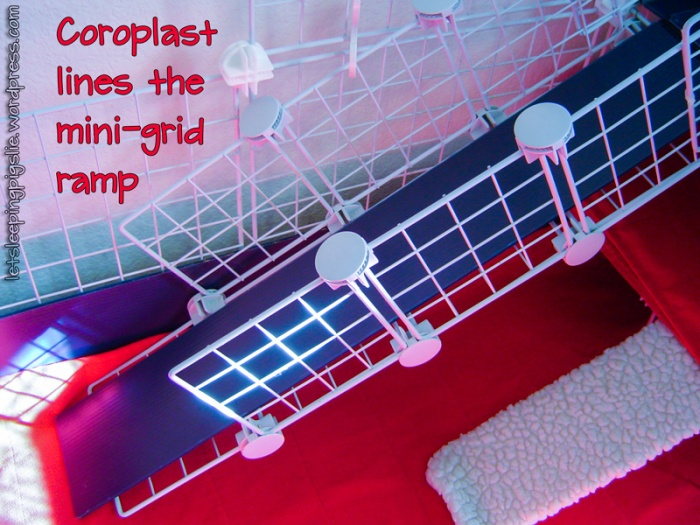 Coroplast lines the mini-grid ramp, by LetSleepingPigsLie
