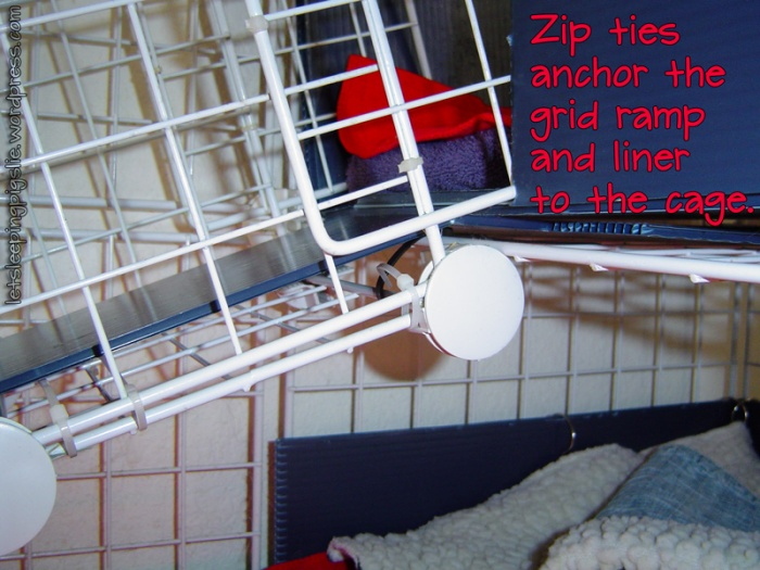 Zip ties anchor the grid ramp and liner to the cage, by LetSleepingPigsLie