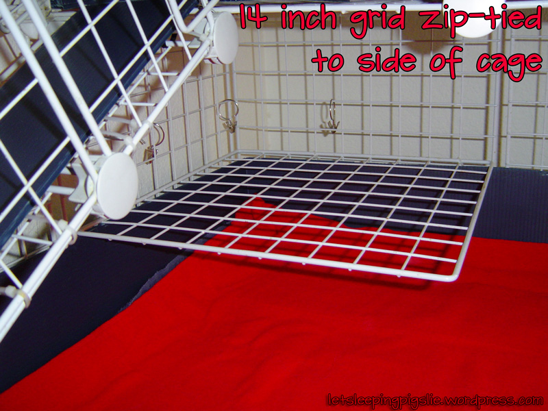 how to build a second level for guinea pig cage