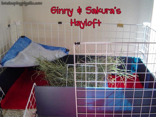 Ginny & Sakura's Hayloft