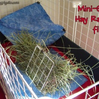 Cage Building: The Hayloft