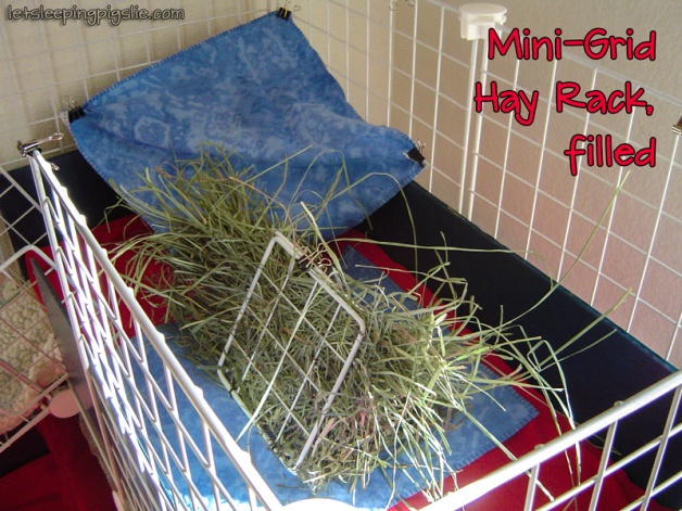 Mini-Grid Hay Rack, filled with timothy hay