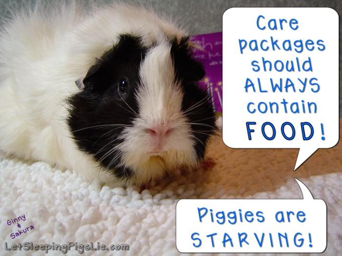 Care Package, by LetSleepingPigsLie