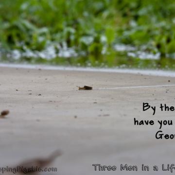 Three Men in a Lifeboat, by LetSleepingPigsLie