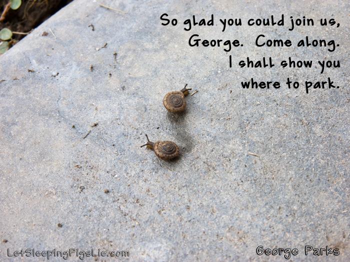 George Parks, by LetSleepingPigsLie